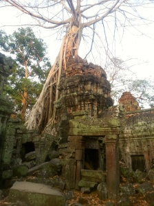 Enormous trees consume the crumbling temples in Ta Prohm.